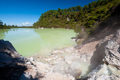 Geothermal Landscape - Rotorua, New Zealand Royalty Free Stock Photos