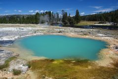 Yellowstone National Park, USA Royalty Free Stock Photo