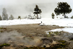 Geothermal pool Yellowstone Wyoming Stock Images