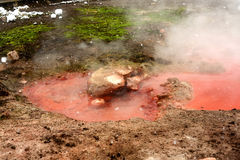 Geothermal pool Yellowstone Wyoming Stock Photography