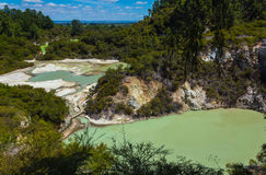 Geothermal Pools at Wai-O-Tapu or Sacred Waters – Thermal Wonderland Rotorua New Zealand Stock Photography