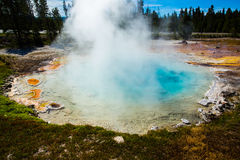 Geothermal in yellowstone park. Geothermal with rising steam and colored water in Yellowstone park royalty free stock image
