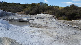 Geothermal Spring NZ. Hells Gate Geothermal Spring New Zealand Royalty Free Stock Images