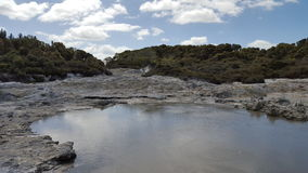 Geothermal Spring NZ. Hells Gate Geothermal Spring New Zealand Royalty Free Stock Photography