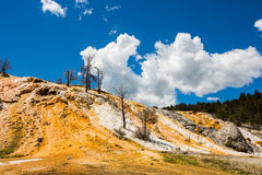 The geothermal in yellowstone park. The geothermal under blue sky in yellowstone park stock photo