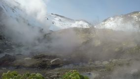 Geothermal valley, hot springs area on Kamchatka Peninsula stock video
