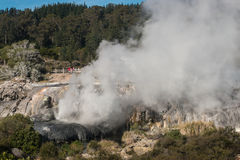 Geothermal valley in Rotorua Royalty Free Stock Images