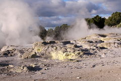 Geothermal zone in New Zealand Royalty Free Stock Images