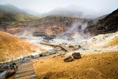 Geothermisch gebied in IJsland stock foto