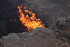 Geothermisch op Lanzarote Royalty-vrije Stock Foto