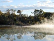Geothermische Activiteit in Kuirau Park, Nieuw Zeeland Royalty-vrije Stock Foto's