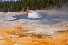 Geothermische geiser Royalty-vrije Stock Foto's