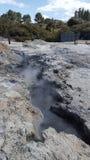 Geothermischer Frühling NZ Stockfotos