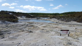 Geothermischer Frühling NZ Stockbilder