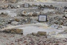 Geothermisches Heißwasser in Furnas auf der Insel von Sao Miguel stockbilder