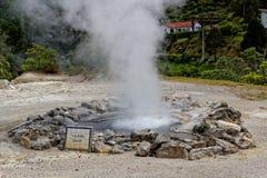 Geothermisches Heißwasser in Furnas auf der Insel von Sao Miguel stockfotografie
