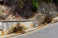 Geothermisches Heißwasser in Furnas auf der Insel von Sao Miguel lizenzfreies stockbild