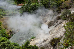 Geothermisches Heißwasser in Furnas auf der Insel von Sao Miguel lizenzfreie stockfotos