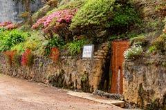 Geothermisches Heißwasser in Furnas auf der Insel von Sao Miguel stockfoto