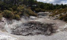 Geothermisches Märchenland WaiOTapu, Neuseeland stockbild