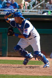 Geovany Soto of the Chicago Cubs. #18 Royalty Free Stock Photo