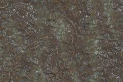 Geoxydeerd materiaal - milieu-effect, metaalpatroon royalty-vrije stock afbeelding