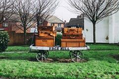 Gepäcklaufkatzenskulptur-Randhügel Liverpool stockbilder