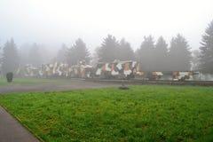Gepanzerter Zug im Nebel Lizenzfreies Stockbild