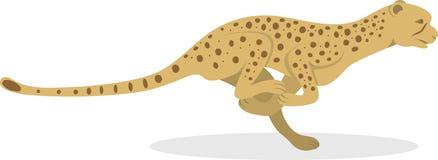 Gepard Lizenzfreies Stockbild