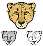 Gepard-Gesichter Lizenzfreie Stockbilder