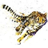 Gepard-T-Shirt Grafiken, afrikanische Tiergepardillustration mit Spritzenaquarell maserten Hintergrund ungewöhnliche Illustration Stockfoto