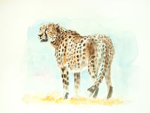 Gepardaquarellmalerei Stockfotografie