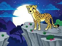 Gepardtemabild 2 Arkivfoton