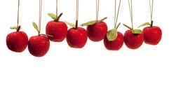 Geparelde vruchten voor het plukken Stock Afbeeldingen