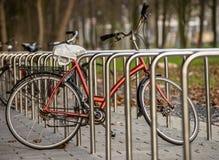 Geparkeerd bicicle royalty-vrije stock foto's
