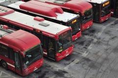 Geparkeerde bussen op een rij stock afbeelding