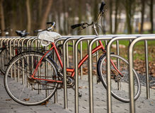 Geparktes bicicle Lizenzfreie Stockfotos