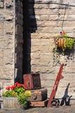 Gepäcklaufkatze und -kästen Stockbild