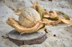 Gepelde kokosnoot en schil naast het Stock Foto's