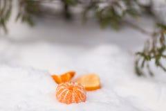 Gepelde mandarin onder de boom in de sneeuw Stock Foto