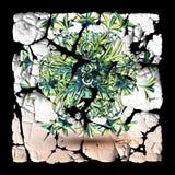 Gepelde plastic die sticker met fractal wordt opgesmukt royalty-vrije illustratie