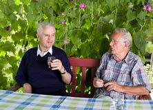 gepensioneerden Royalty-vrije Stock Afbeeldingen
