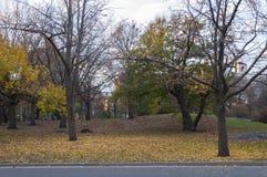 Gepflasterte Straße über Central Park, New York Stockbilder