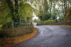 Gepflasterte Straße auf Brücke in Irland Lizenzfreie Stockfotos