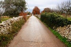 Gepflasterte Straße gerade zur Unendlichkeit zwischen den Trockenmauern Stockfoto