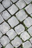 Gepflasterte Straße in Rom Lizenzfreie Stockbilder