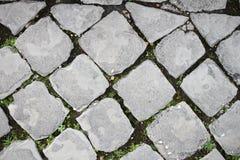 Gepflasterte Straße in Rom Stockfotografie