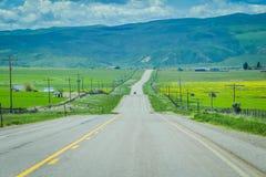 Gepflasterte Straße in Yellowstone Nationalpark, Wyoming, Vereinigte Staaten, zwischen Grasland, Bergen und bewölktem Himmel stockfotos