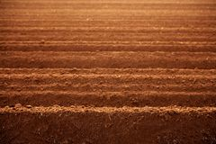 Gepflogene Boden-Landwirtschaftsfelder des roten Lehms Stockfotografie