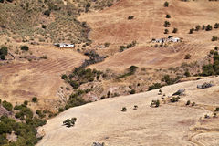 Gepflogene Felder in Andalusien Lizenzfreie Stockbilder